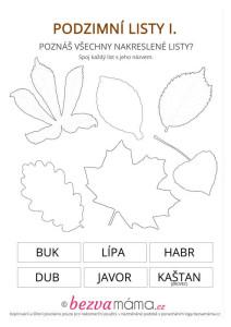 podzimni listy