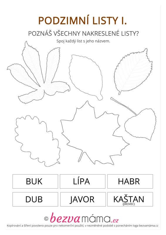 Pracovni List Podzimni Listy I Bezva Mama
