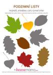 podzimni listy 2