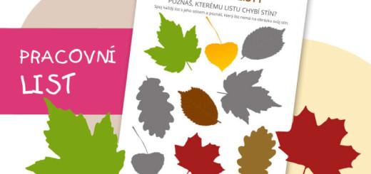 podzimní listy 2