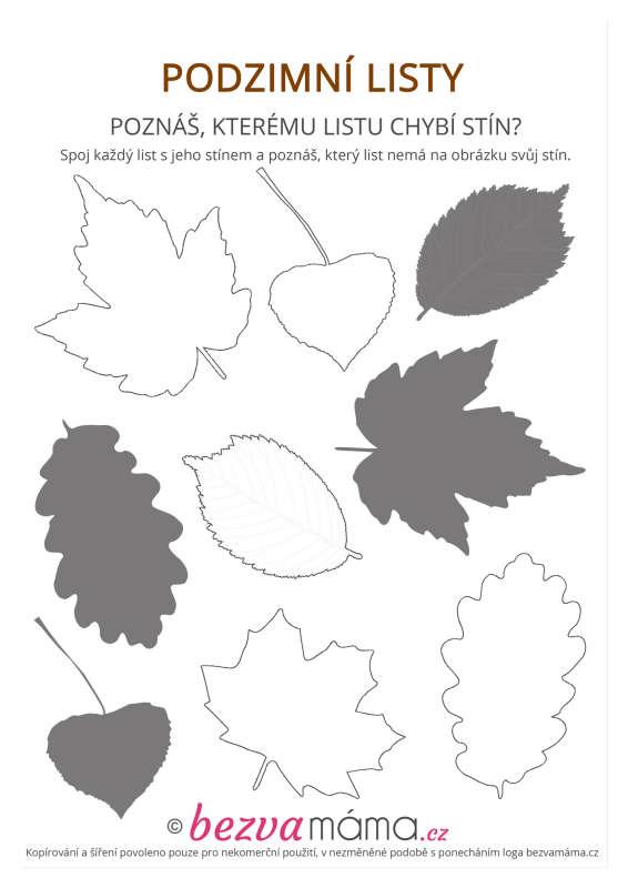 Pracovni List Podzimni Listy Ii Bezva Mama