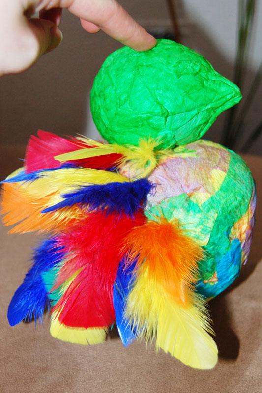 Papoušek přímo z amazonského pralesa